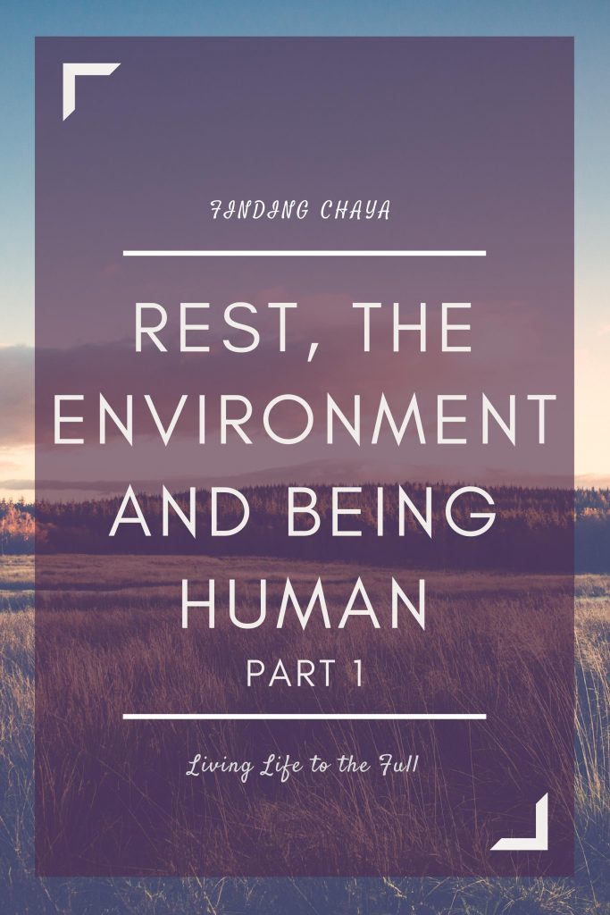 Rest, the Environment, and Being Human