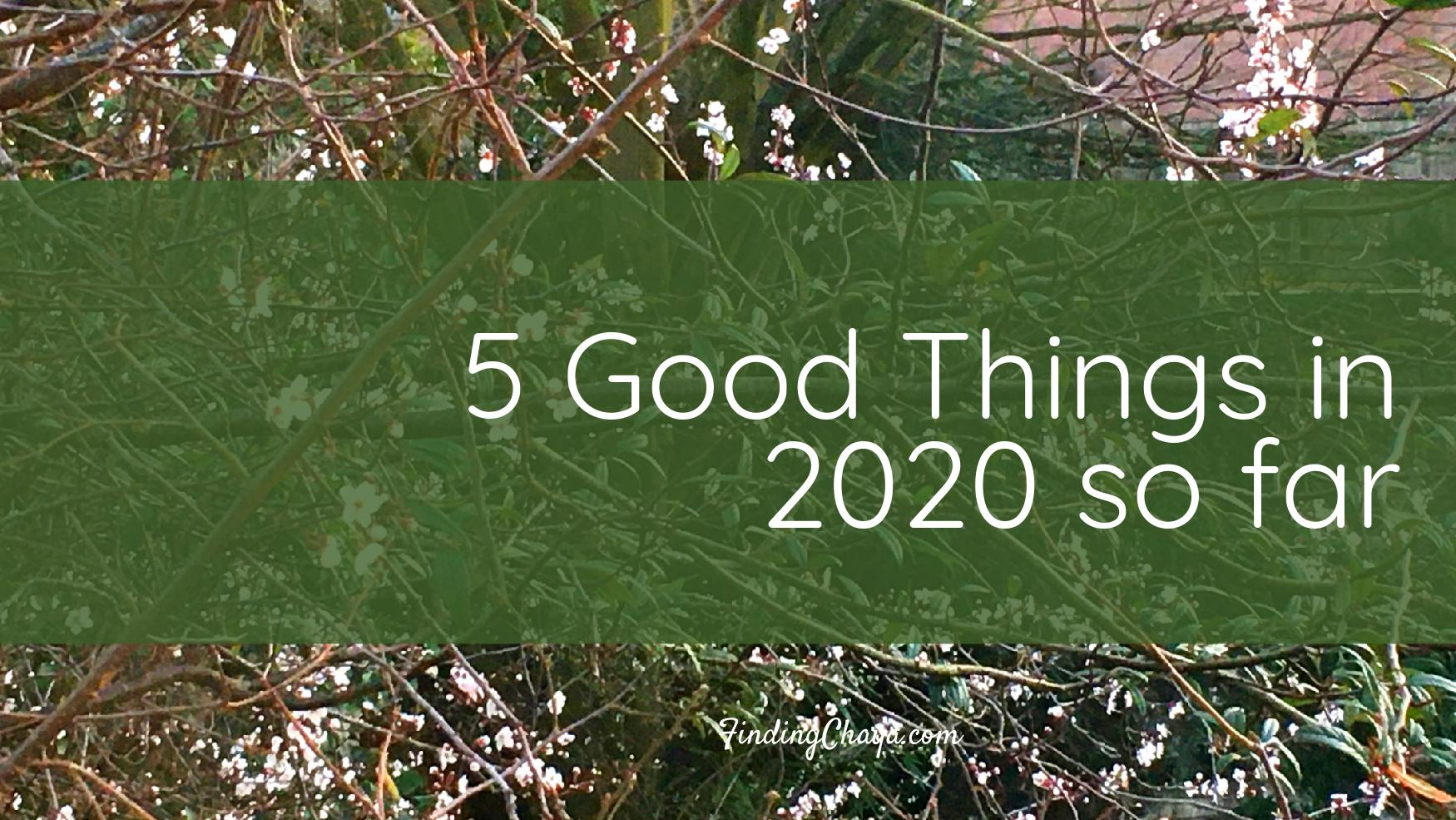 5 Good Things in 2020 so far