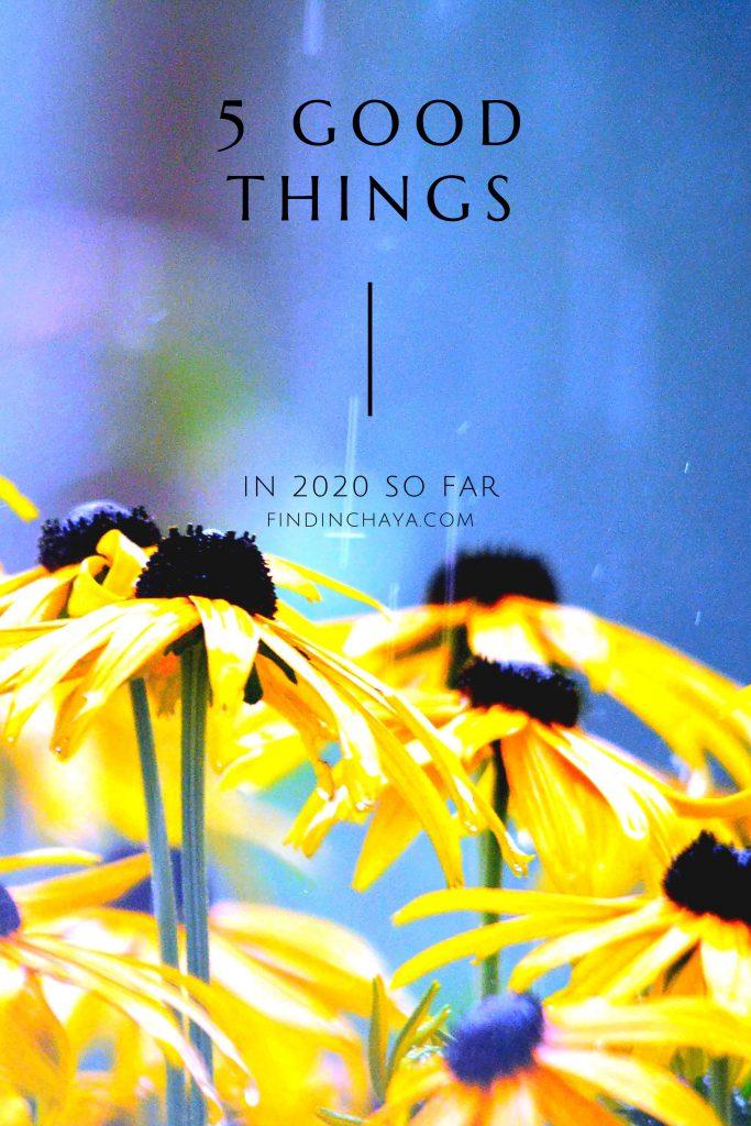 5 Good Things in 2020 so far || FindingChaya.com