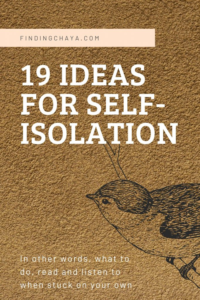 19 Ideas for Self-Isolation