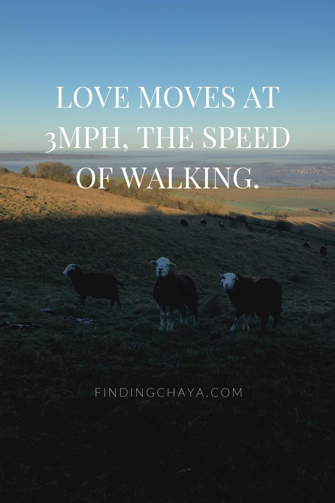 Love moves at 3mp, the speed of walking.