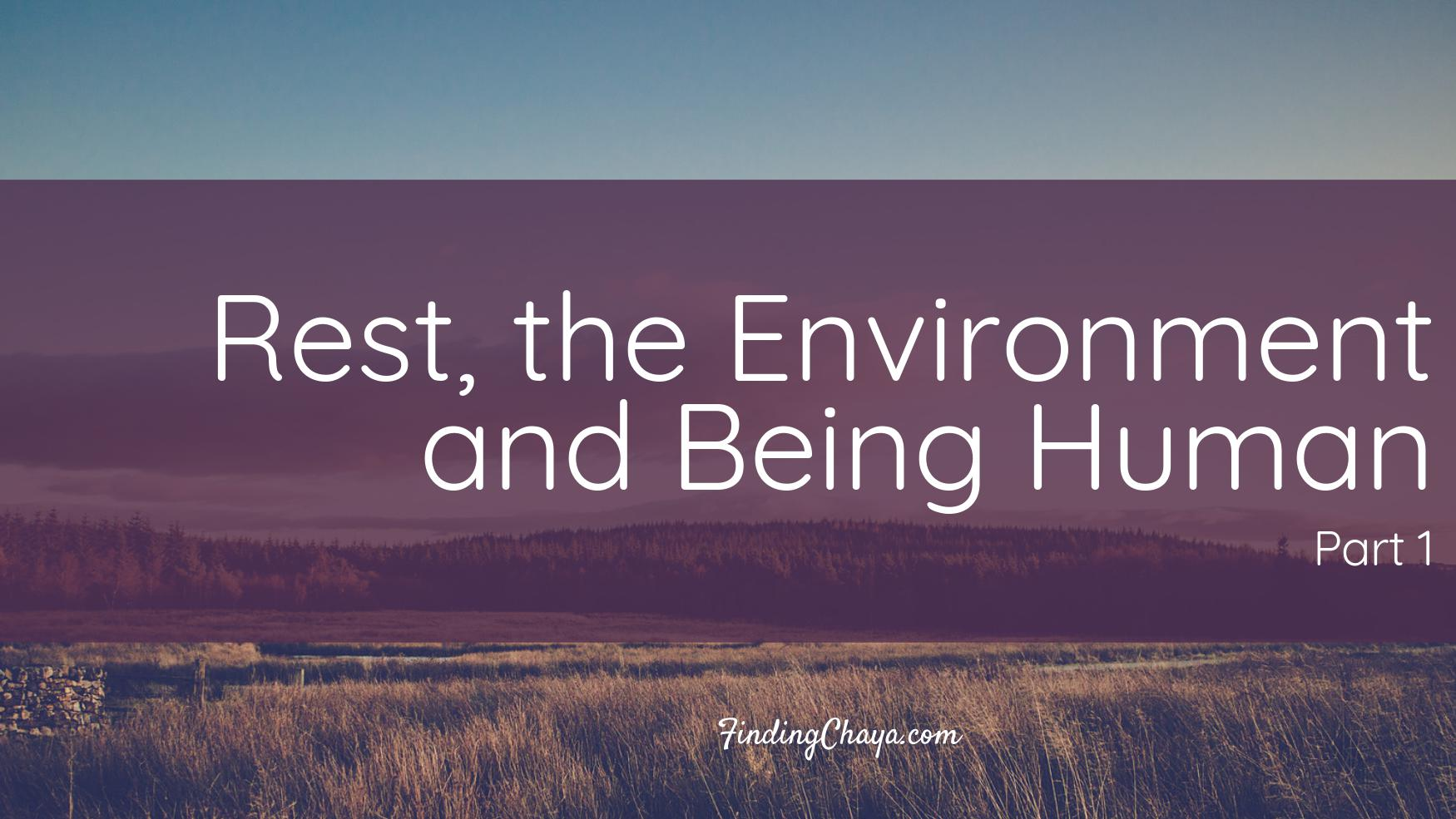 Rest, the Environment and Being Human (Part 1)