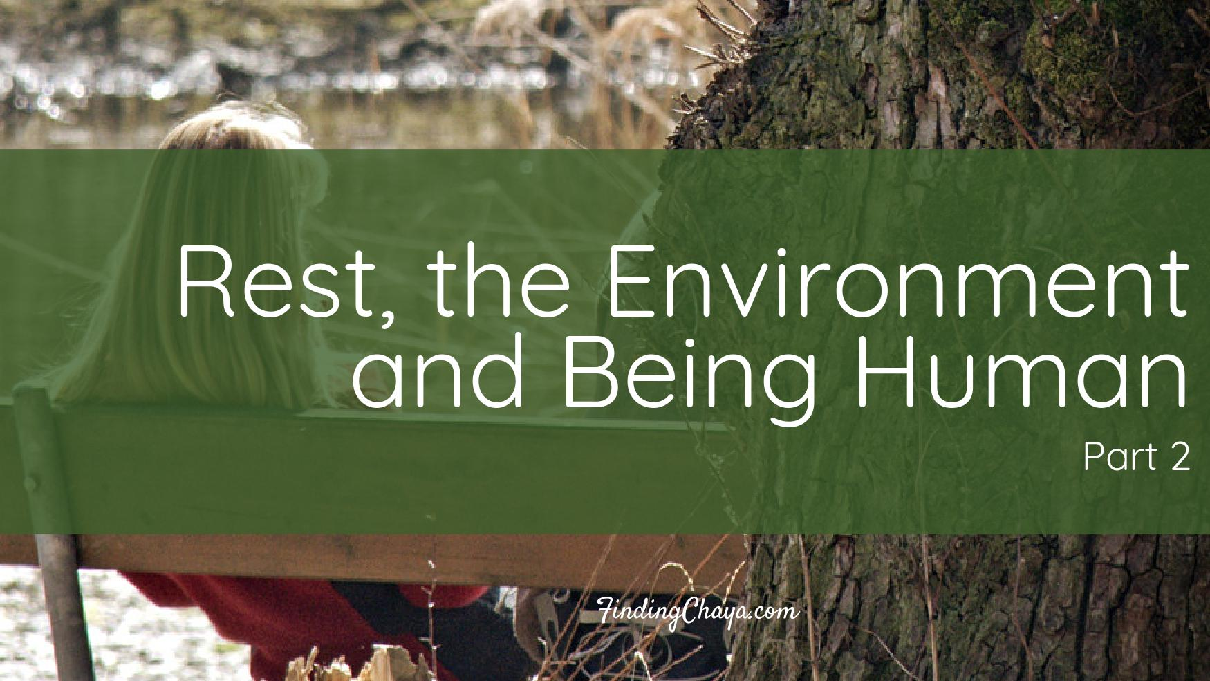 Rest, the Environment and Being Human (Part 2)