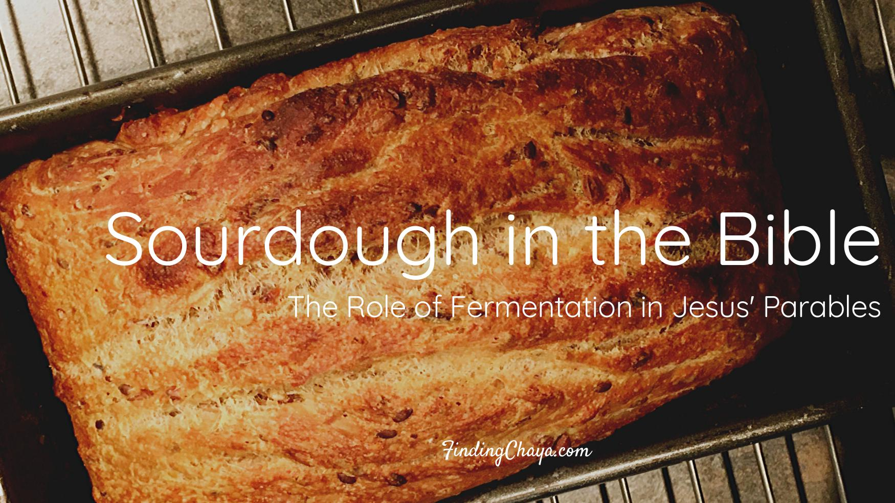 Sourdough in the Bible || The Role of Fermentation in Jesus' Parables